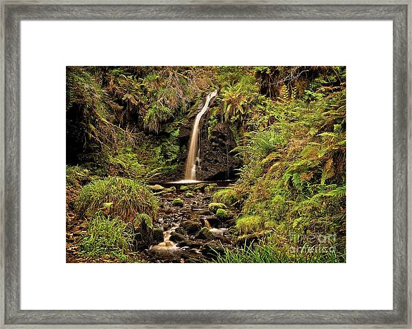 Kielder Forest Waterfall Framed Print