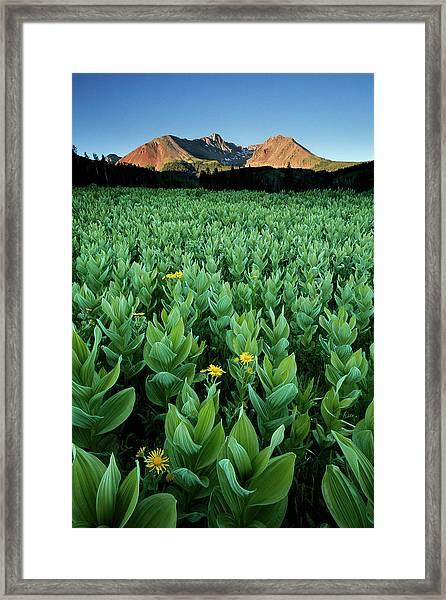 Kilpacker Basin Framed Print