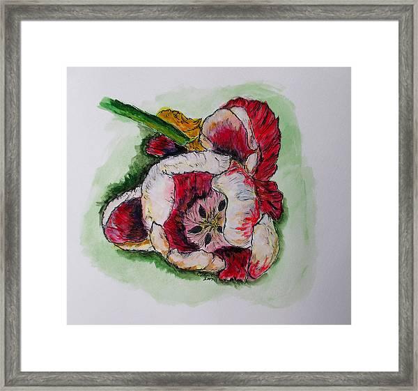 Kimberly's Flowers Framed Print