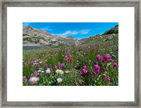 King Lake Summer Landscape Framed Print
