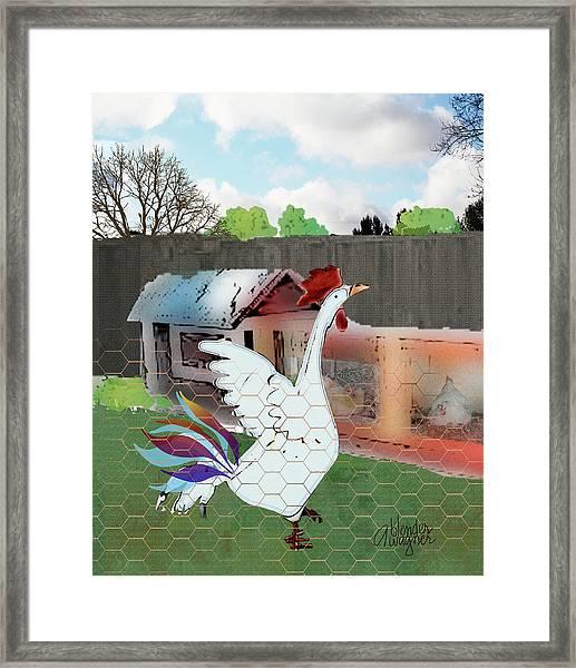 King Of The Hen House Framed Print
