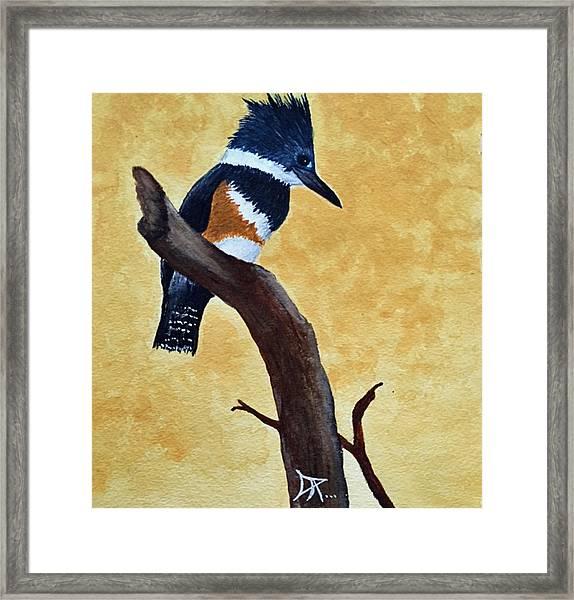 Kingfisher No. 1 Framed Print
