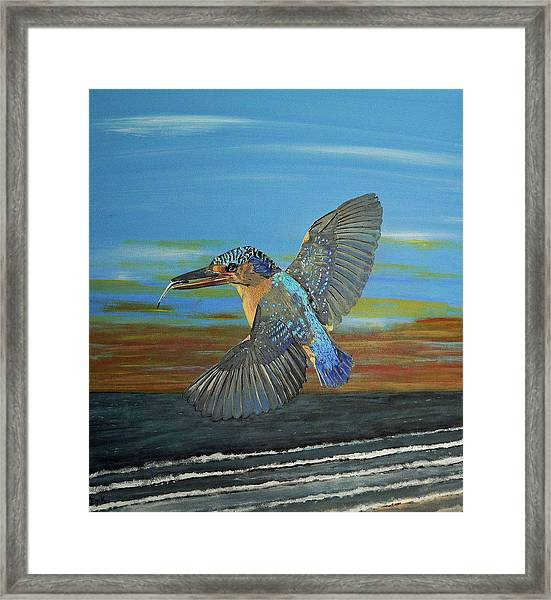 Framed Print featuring the painting Kingfisher Of Eftalou by Eric Kempson