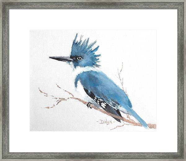 Kingfisher On A Branch Framed Print