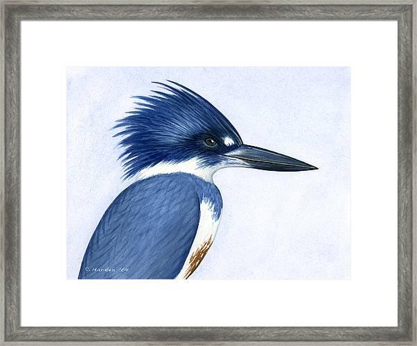 Kingfisher Portrait Framed Print
