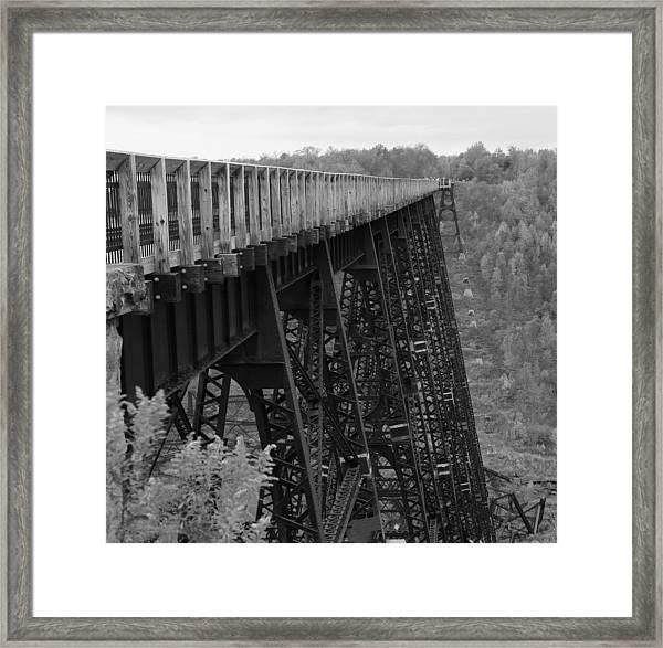 Kinzua Skywalk Framed Print
