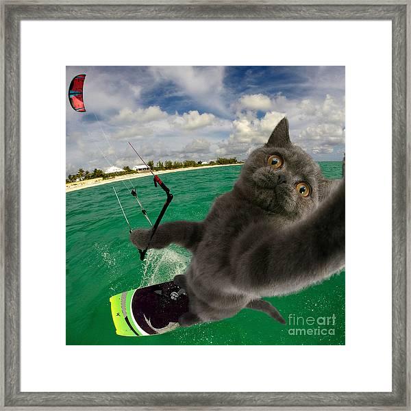 Kite Surfing Cat Selfie Framed Print
