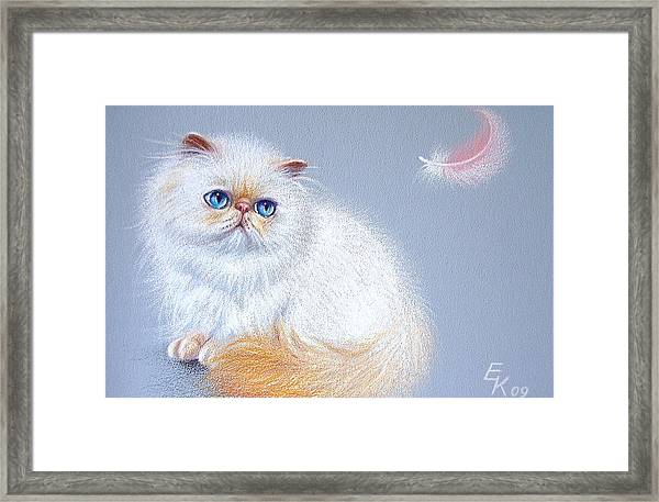 Kitten And Feather 2 Framed Print