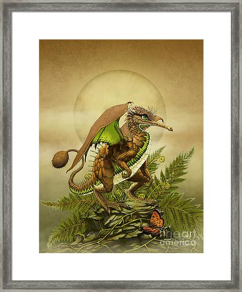 Kiwi Dragon Framed Print