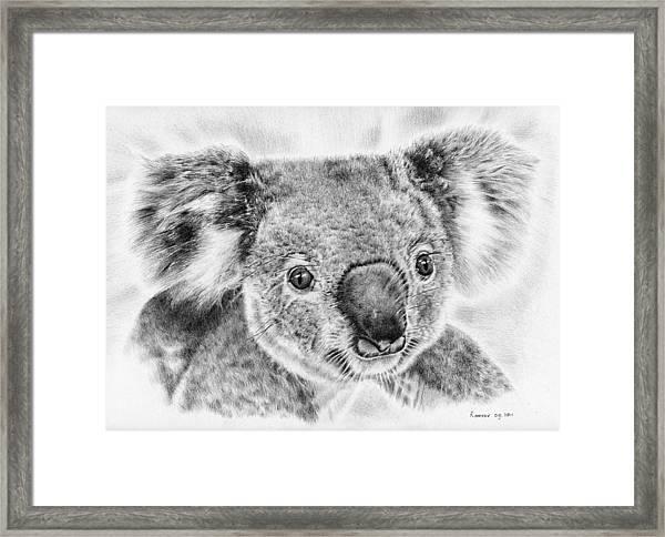Koala Newport Bridge Gloria Framed Print
