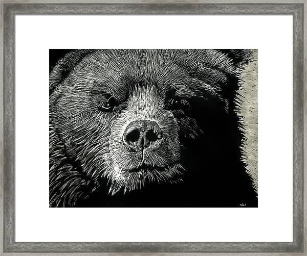 Kodiak Moment Framed Print