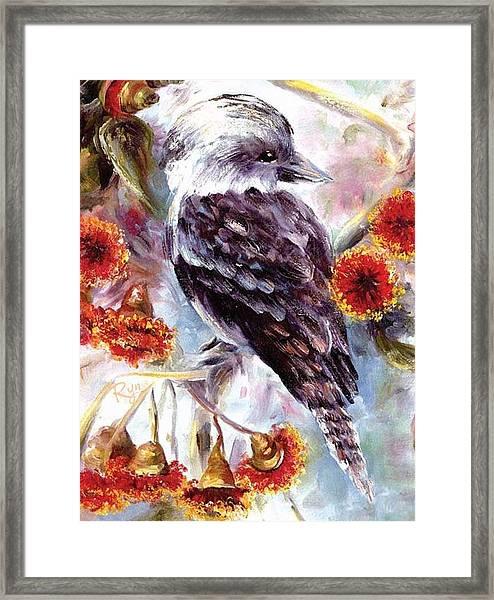Kookaburra In Red Flowering Gum Framed Print