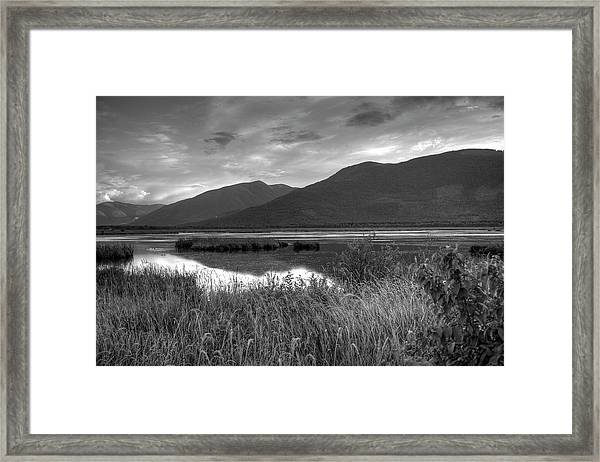 Kootenay Marshes In Black And White Framed Print