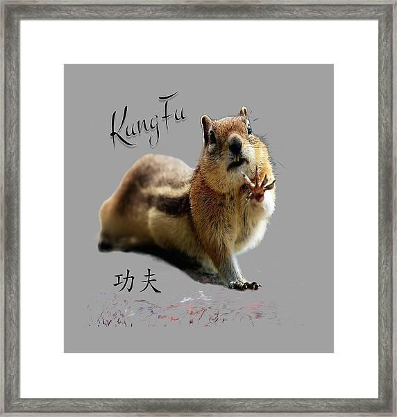 Kung Fu Chipmunk Framed Print