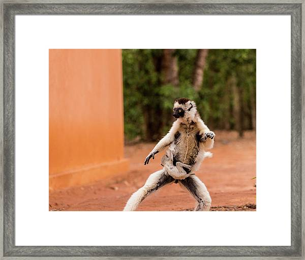 Kung Fu Mom Framed Print