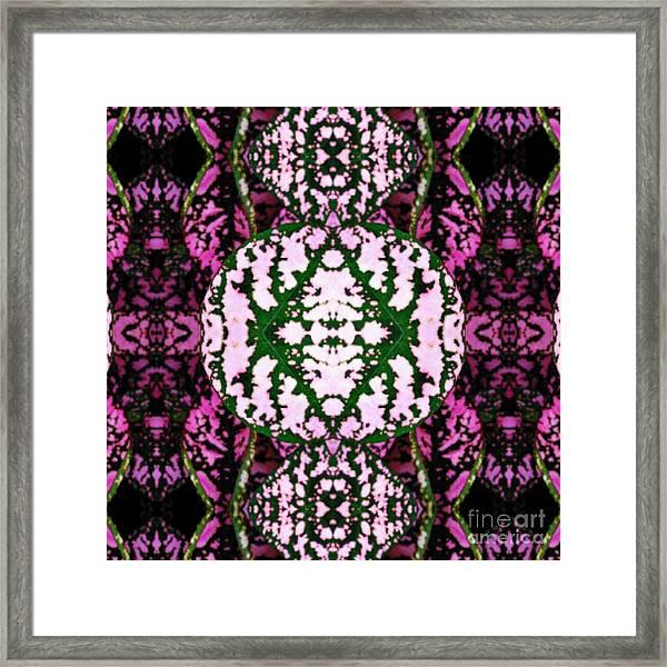 KV2 Framed Print