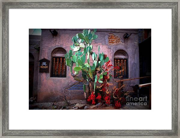 La Hacienda In Old Tuscon Az Framed Print
