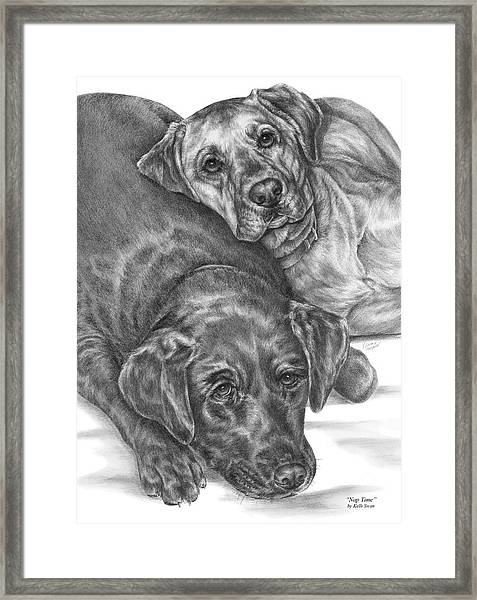 Labrador Dogs Nap Time Framed Print