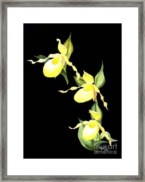 Ladies Trio Framed Print