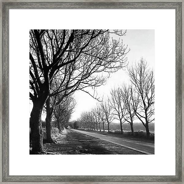 Lady Anne's Drive, Holkham Framed Print