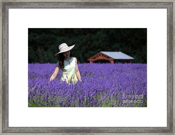 Lady In Lavender Framed Print