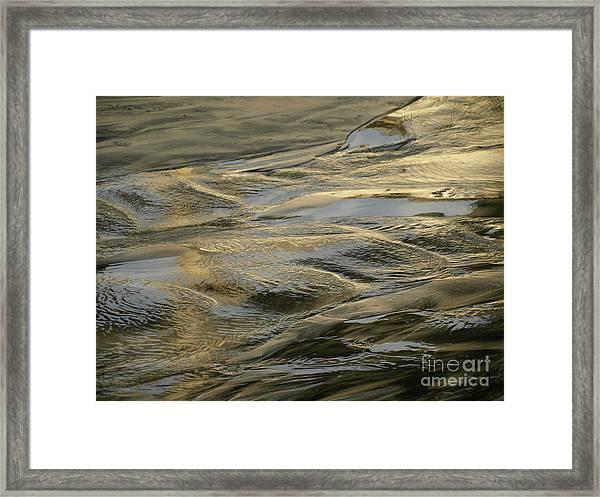 Lajollagold Framed Print