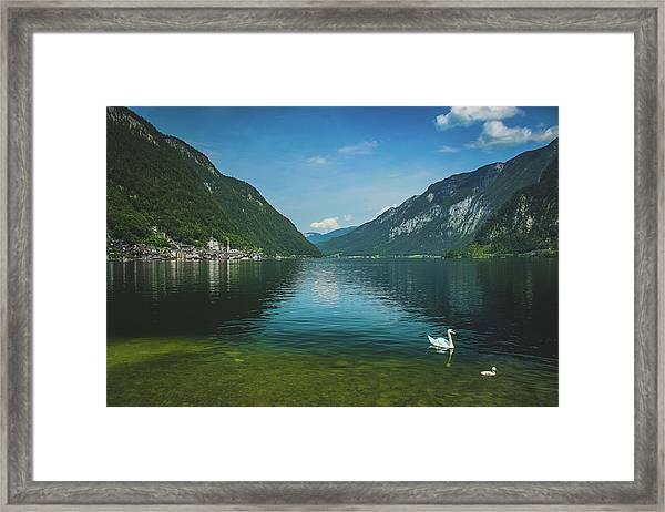 Lake Hallstatt Swans Framed Print