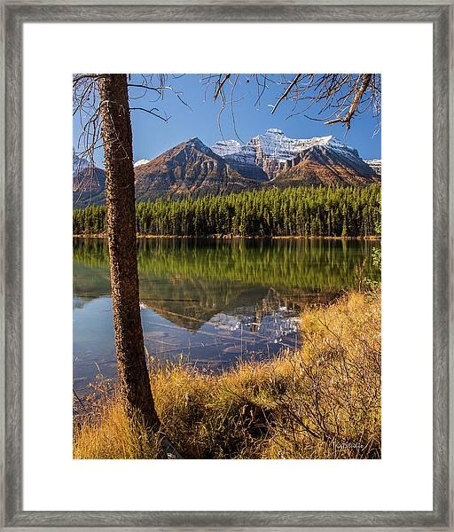 Lake Herbert Reflections Framed Print