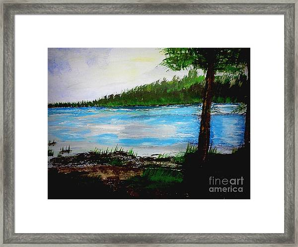 Lake In Virginia The Painting Framed Print