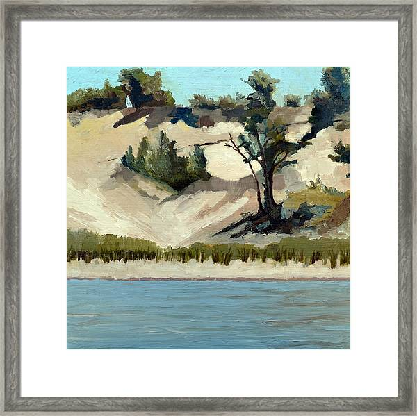 Lake Michigan Dune With Trees And Beach Grass Framed Print
