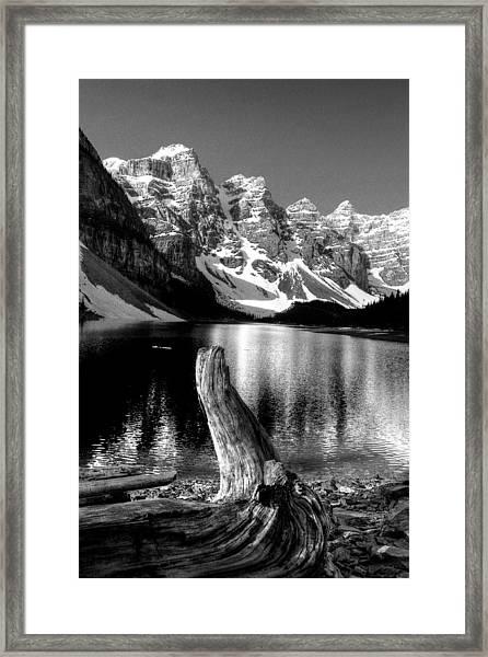 Lake Moraine Drift Wood Framed Print