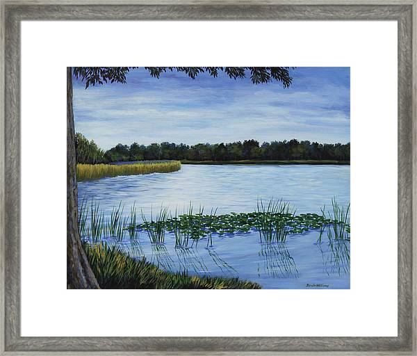 Lake Tarpon Shoreline On A Cloudy Day Framed Print by Penny Birch-Williams