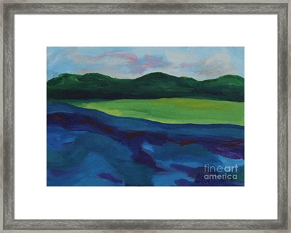 Lake Visit Framed Print