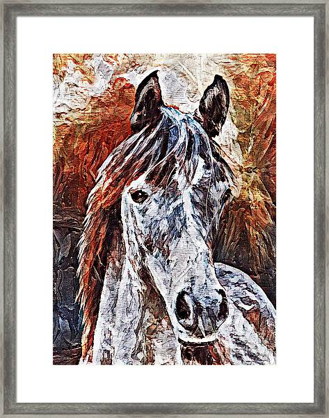 Lakota Framed Print