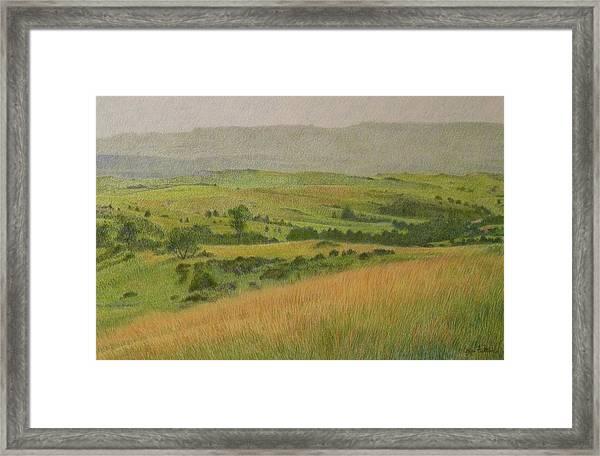 Land Of Grass Framed Print