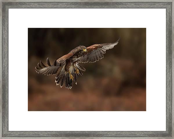 Landing Approach Framed Print