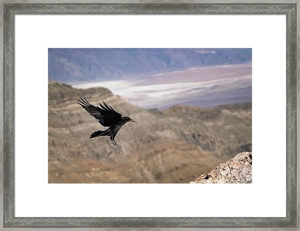 Landing Framed Print