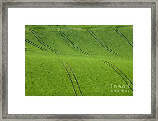 Landscape 5 Framed Print