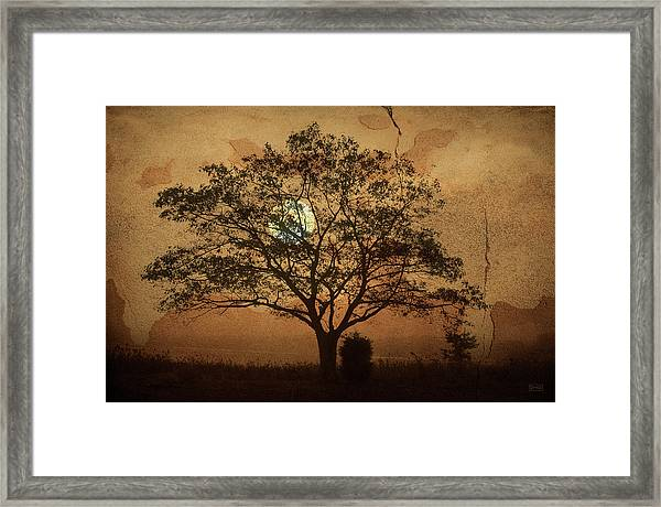 Landscape On Adobe Wall Framed Print