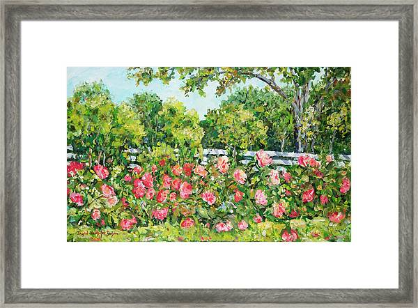 Landscape With Roses Fence Framed Print