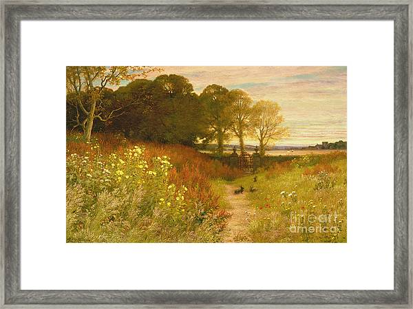 Landscape With Wild Flowers And Rabbits Framed Print