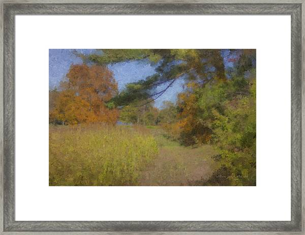 Langwater Farm Tractor Path Framed Print