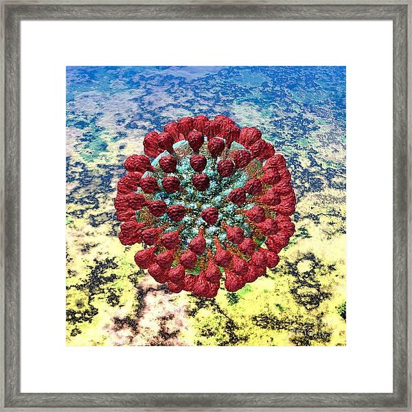 Lassa Virus Framed Print