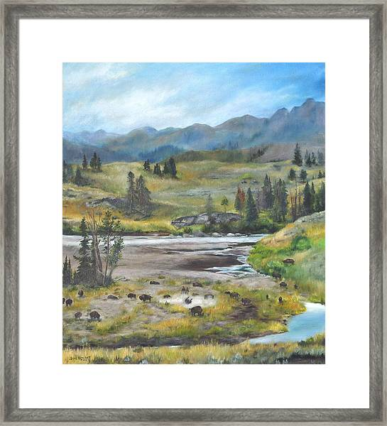 Late Summer In Yellowstone Framed Print