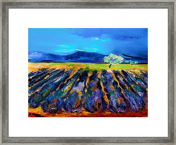 Framed Print featuring the painting Lavender Field by Elise Palmigiani