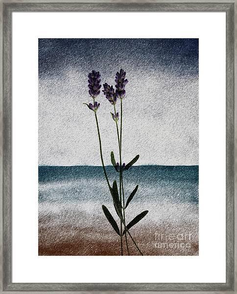 Lavender Ocean Breath Framed Print