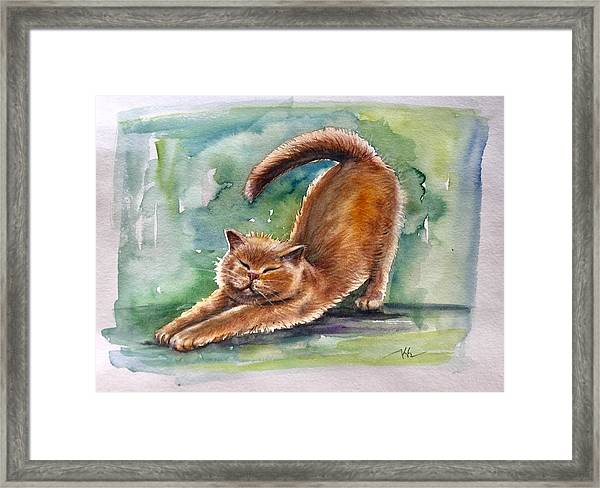 Framed Print featuring the painting Lazy Day by Katerina Kovatcheva