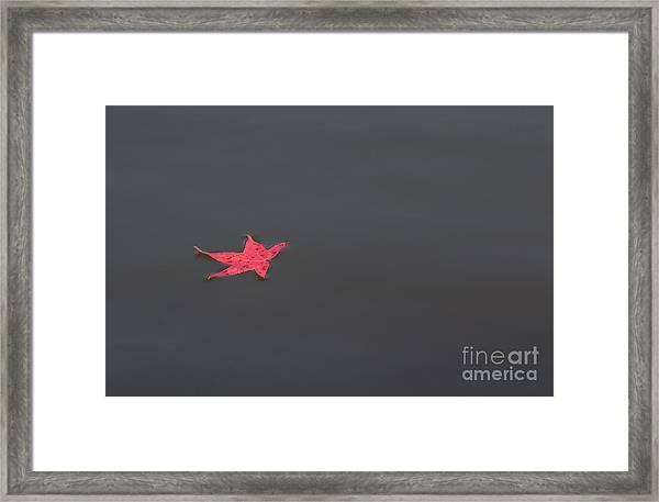 Leaf Alone Framed Print