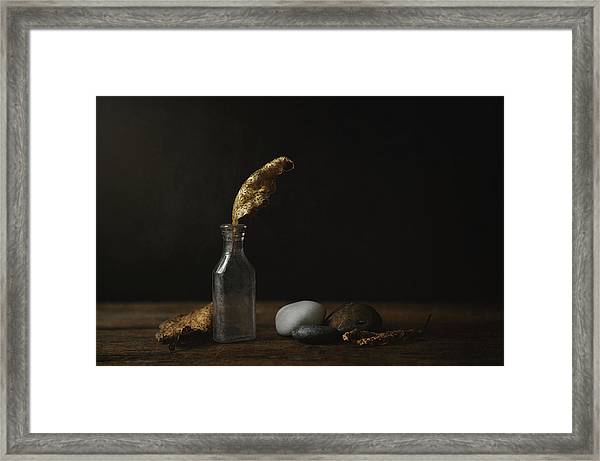 Leaf Bottle Rocks Framed Print