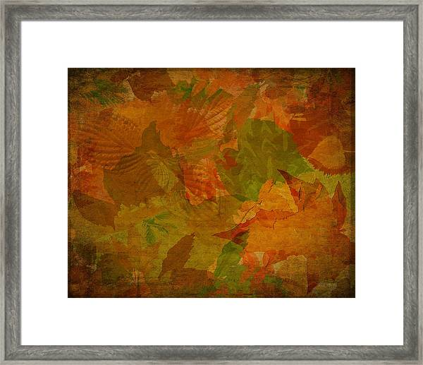 Leaf Texture And Background Framed Print